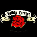 Agility Forever