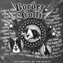 Border Collie Spotlight