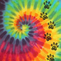Filigree Paw Trail - Rainbow Swirl