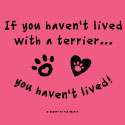If You Haven't Lived with a Terrier, You Haven't Lived!